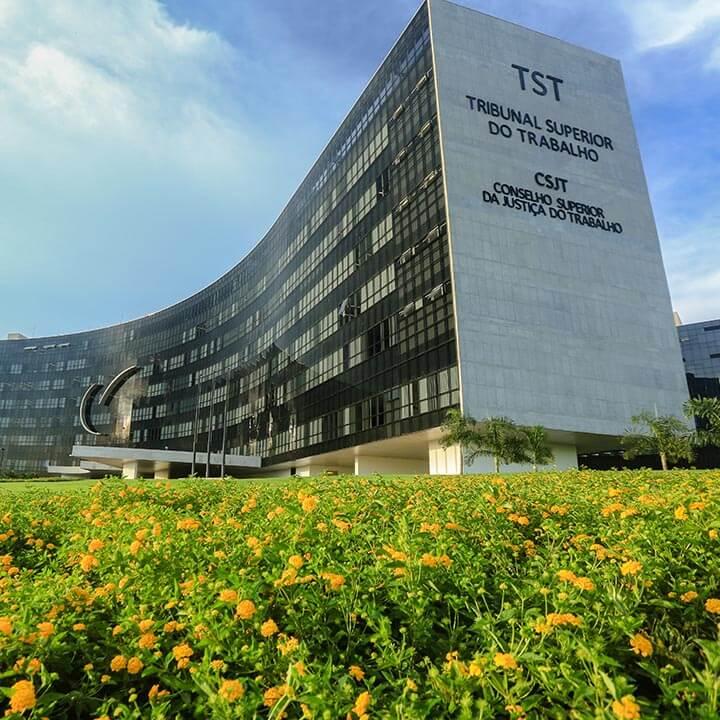 Imagem de Campanha Salarial Aviação: Aeroviários e Empresas Aéreas negociam no TST